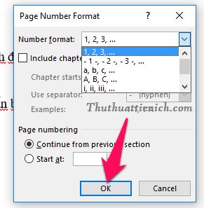 Chọn định dạng dùng để đánh số trang trong phần Number format