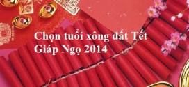 chon-tuoi-xong-dat-tet-giap-ngo-2014
