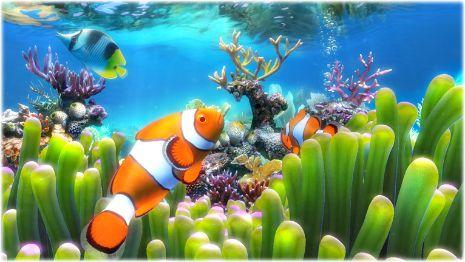 Sim Aquarium - Phần mềm tạo bể cá 3D trên màn hình