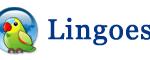 Tải Lingoes mới nhất – Từ điển đa ngôn ngữ miễn phí tốt nhất