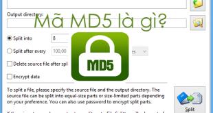 Mã MD5 là gì? Cách kiểm tra mã MD5 bằng phần mềm FFSJ