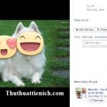 Hướng dẫn cách chèn nhãn dán vào ảnh tải lên Facebook
