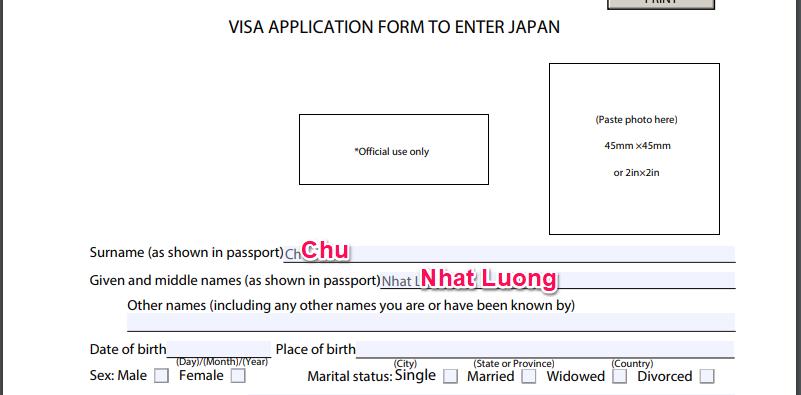 Form Visa đi Nhật chỉ yêu cầu điền Surname, Given and middle names