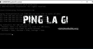Ping là gì?
