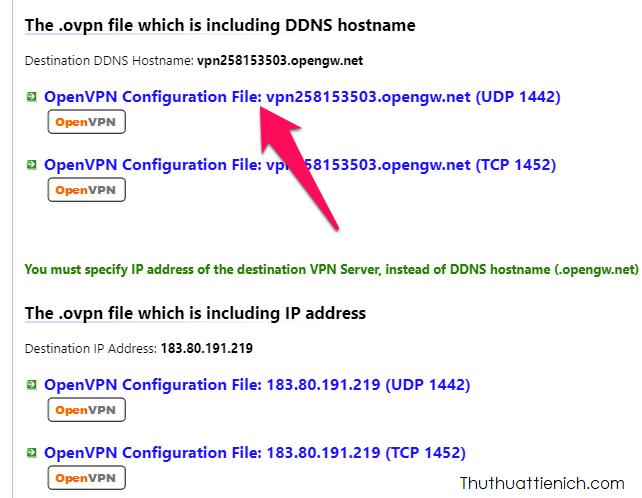 Chọn DDNS loại UDP