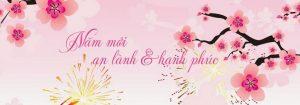 Ảnh bìa Facebook Tết hình hoa mai, hoa đào