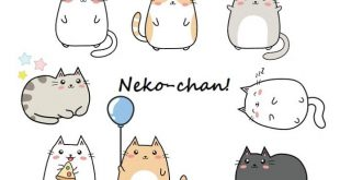Chan là gì? Kun là gì? San là gì? Sama là gì?