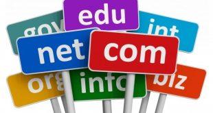 Domain là gì? Hosting là gì? Website là gì?