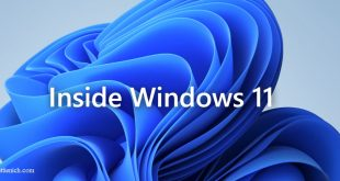 Tải Windows 11 Insider Preview (File ISO) chính thức từ Microsoft