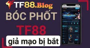TF88 có lừa đảo không? Tìm hiểu tin đồn TF88 lừa đảo người chơi?